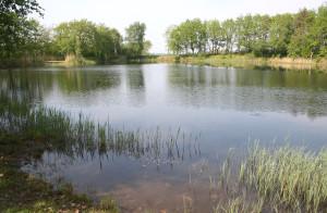 Teglværkssøen